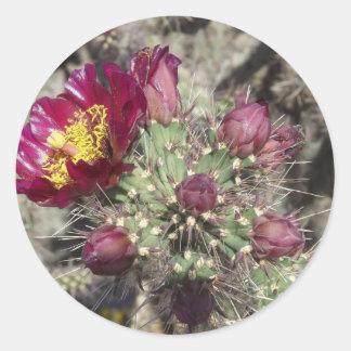Flores del cactus de Borgoña Pegatina Redonda