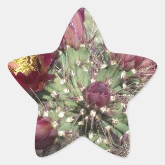 Flores del cactus de Borgoña Calcomania Forma De Estrella