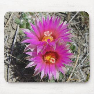 Flores del cactus de la bola F0005 (vivipara del e Alfombrillas De Ratón