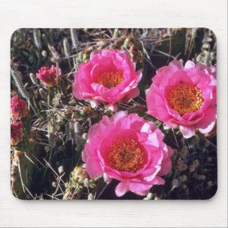 Flores del cactus del higo chumbo de la Rojo-Flor Alfombrilla De Ratones