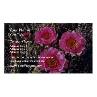 Flores del cactus del higo chumbo de la Rojo-Flor Tarjetas De Visita