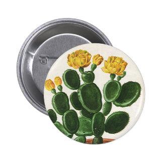 Flores del cactus del vintage, plantas suculentas pin redondo de 2 pulgadas