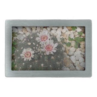 Flores del cactus hebillas de cinturon rectangulares