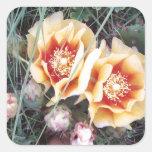Flores del cactus pegatina cuadrada