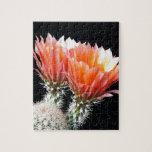 Flores del cactus rompecabezas