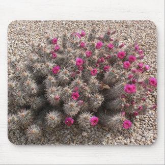 Flores del cactus alfombrillas de raton