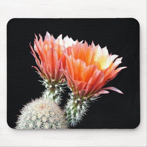 Flores del cactus tapetes de raton