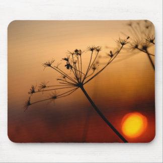Flores del campo de la puesta del sol tapete de raton