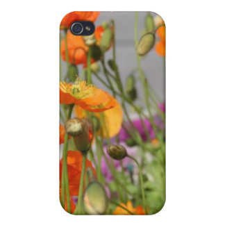 flores del caso 4 4s del iPhone iPhone 4 Protectores