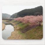 Flores del cerezo en Japón Alfombrilla De Ratones