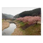 Flores del cerezo en Japón Tarjetas
