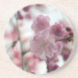 Flores del cerezo posavasos para bebidas