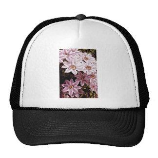 Flores del Clematis Gorros Bordados