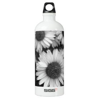 Flores del cono - margarita - en blanco y negro