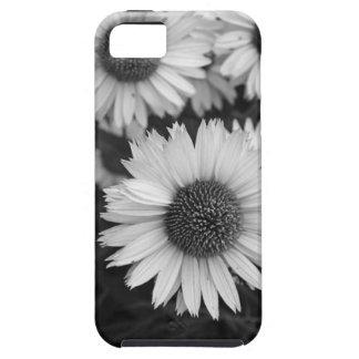 Flores del cono - margarita - en blanco y negro iPhone 5 carcasa