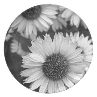 Flores del cono - margarita - en blanco y negro platos para fiestas