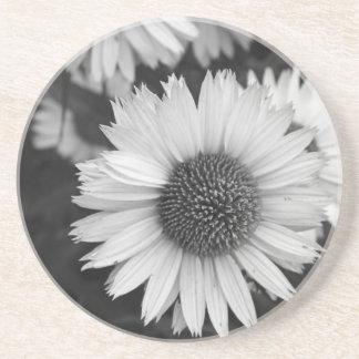 Flores del cono - margarita - en blanco y negro posavasos manualidades
