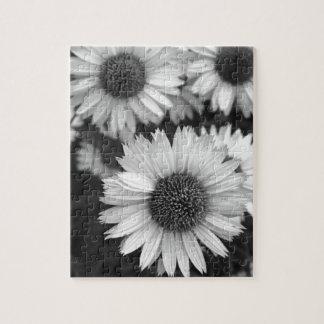Flores del cono - margarita - en blanco y negro puzzle con fotos