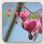 Flores del corazón sangrante posavaso