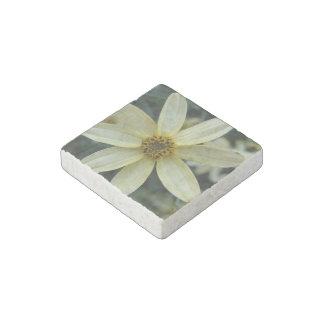 Flores del Coreopsis Imán De Piedra