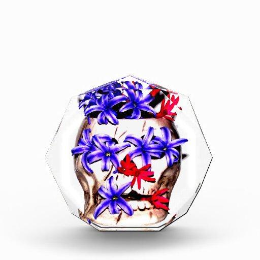 Flores del cráneo y del jacinto