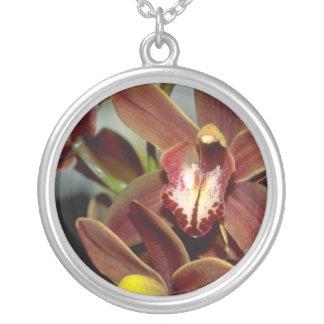 Flores del Cymbidium de Brown Grimpola Personalizada