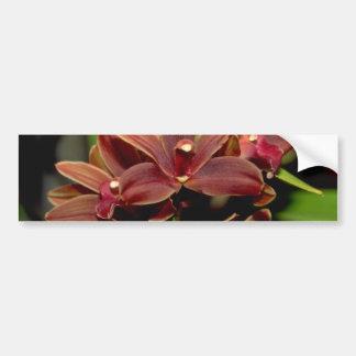 Flores del Dendrobium de Brown Pegatina De Parachoque
