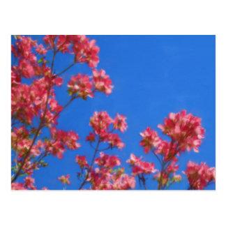 Flores del Dogwood Postal