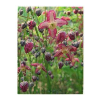 Flores del Epimedium Impresión En Madera