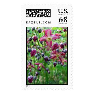Flores del Epimedium - sello grande