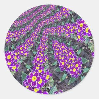 Flores del fractal etiqueta redonda