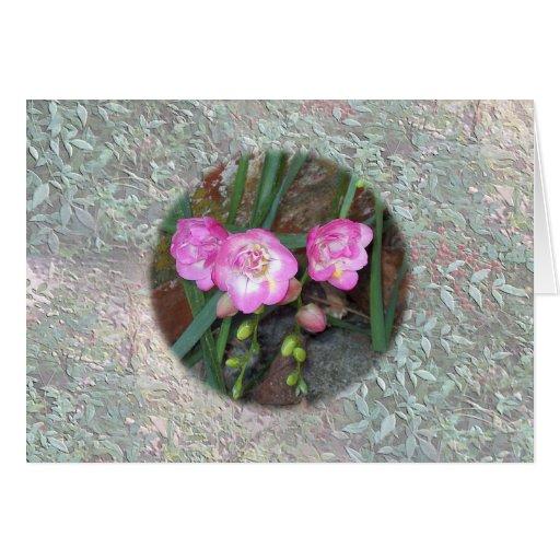 Flores del Freesia Tarjeta De Felicitación