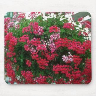 Flores del geranio de hiedra (Pelargonium Peltatum Tapetes De Ratón