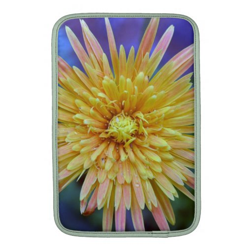 Flores del Gerbera Fundas Macbook Air