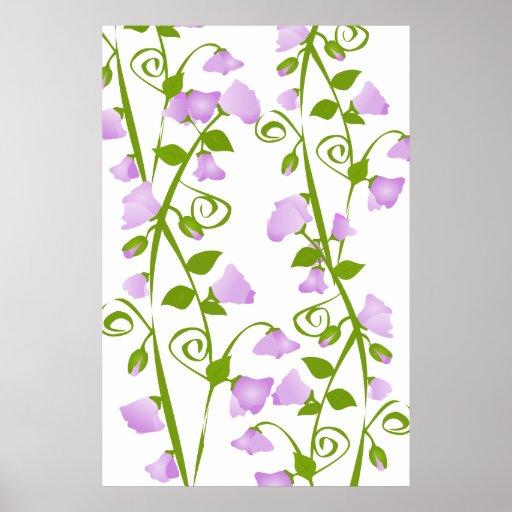 Flores del guisante de olor de la lila poster