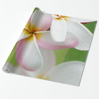 Flores del Hawaiian de la flor de Hawaii del Papel De Regalo