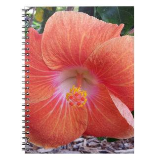 Flores del hibisco de Hawaii Libretas Espirales