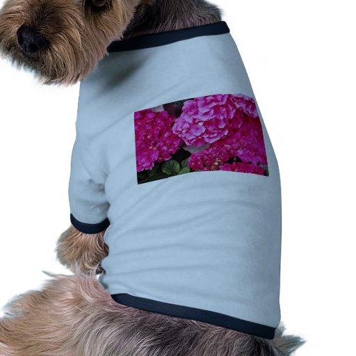 Flores del Hydrangea Camiseta De Perro