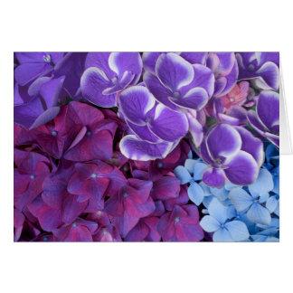 Flores del Hydrangea Tarjeta De Felicitación