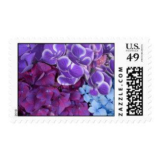 Flores del Hydrangea Timbre Postal