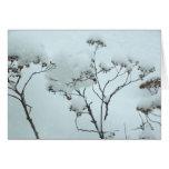 Flores del invierno que doblan la tarjeta