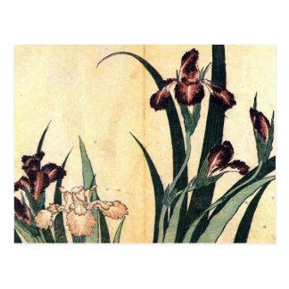 Flores del iris de la pintura del arte de Hokusai Tarjetas Postales