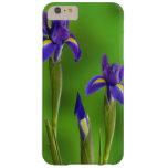 Flores del iris funda de iPhone 6 plus barely there