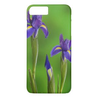 Flores del iris funda iPhone 7 plus