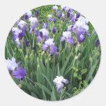 Flores del iris pegatina redonda