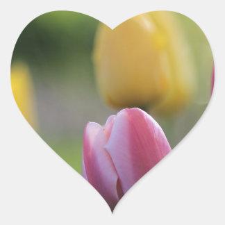 flores del jardín colcomanias de corazon