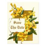 Flores del jazmín amarillo que casan reserva la fe tarjetas postales