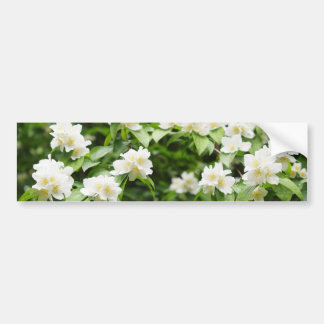 Flores del jazmín pegatina para auto