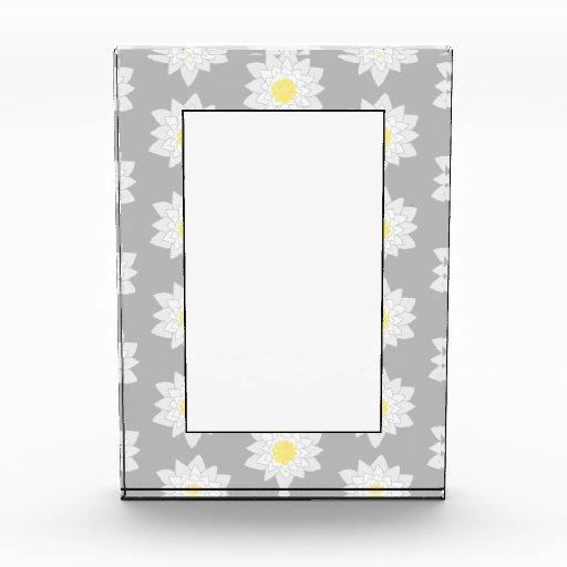 Flores del lirio de agua. Blanco, amarillo y gris