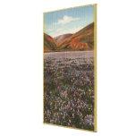 Flores del Lupine de CaliforniaWild en la floració Impresión En Lona